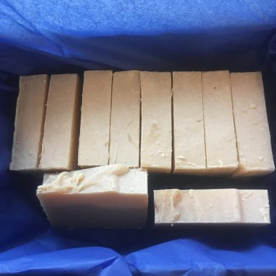 Shampoo Bar 10 Pack Naked