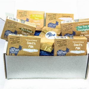 Shampoo Subscription Box